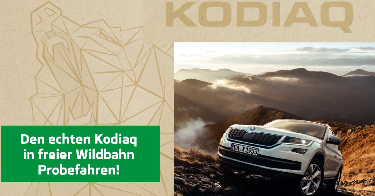 Image for Premierenveranstaltung am 04. März von 10.00 – 16.00 Uhr.  Neues Terrain entdecken mit dem neuen Skoda Kodiaq  und dem neuen Skoda Octavia.