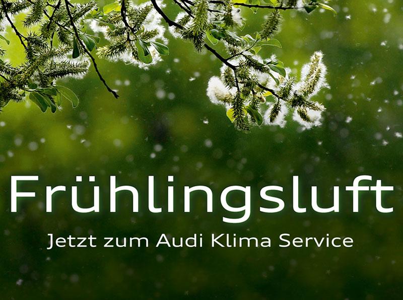 Der Audi Klima Service hilft, für gute Luft zu sorgen – zu jeder Jahreszeit!